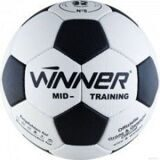 winner_mid_training